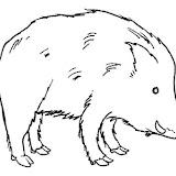 animales salvajes 13.jpg