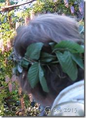 Bryan's wreath