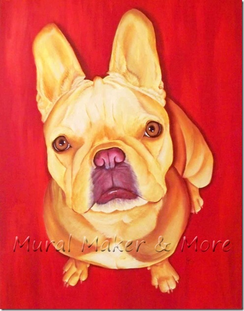 French-Bulldog-Portrait