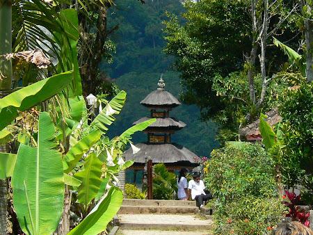 Bali photo: Bedugul