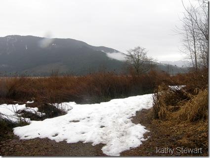 still snow on trail