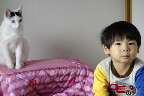 20121231-_DSC8679