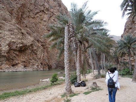 Debarcarea in Wadi Shab