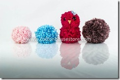 DSC_1383_pompom
