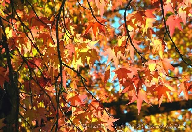 Glória Ishizaka - Outono 2013 - 74