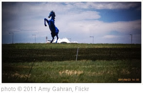 'Evil blue horse of doom. Weird public art choice for airport.' photo (c) 2011, Amy Gahran - license: http://creativecommons.org/licenses/by/2.0/