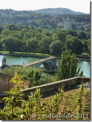 Avignon 2011 The Pont