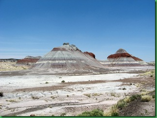 Painted Desert & Petrified Forest 071