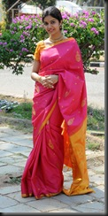 swathi in  pattu  saree