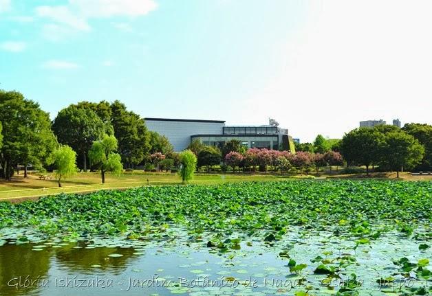 Glória Ishizaka - Jardim Botânico Nagai - Osaka 27