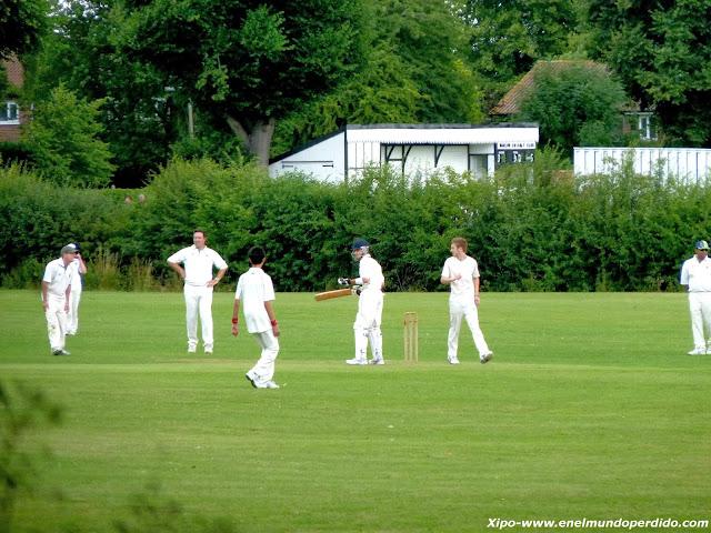 partido-de-cricket-harlow.JPG