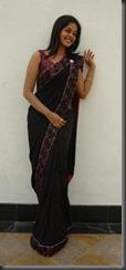 bindu-madhavi in saree