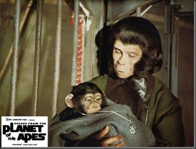apes-1971 4