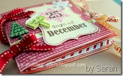 26 Nov Sarah M mini envelope book