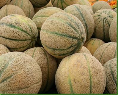 Iroquois Melon