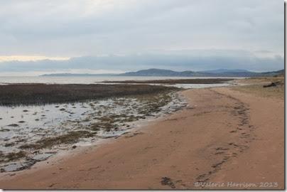 7-Mersehead-beach
