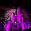 0912_Disney_MK_155.jpg
