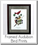 framed bird prints
