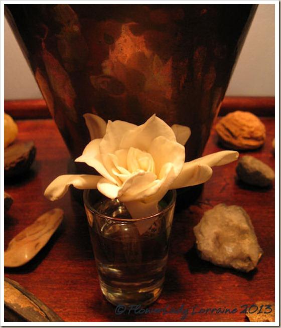 01-18-gardenia