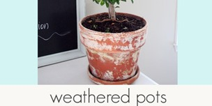 weathered pots