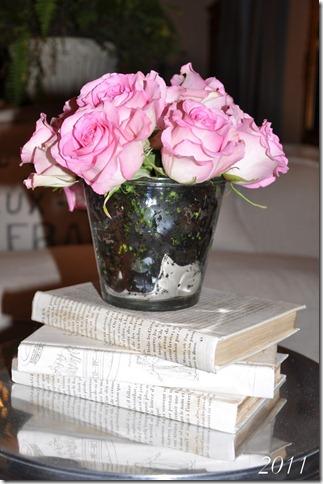 roses 018