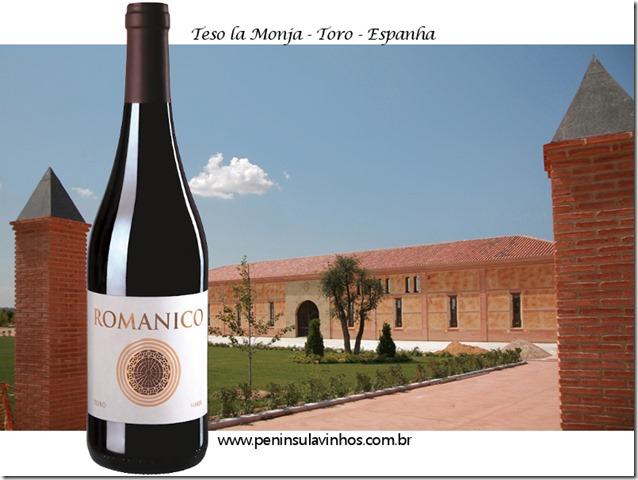 romanico-teso-la-monja-peninsula-vinhos