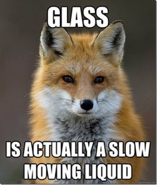 fox-facts-meme-17