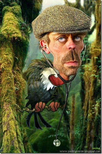 Caricatura Hugh Laurie1