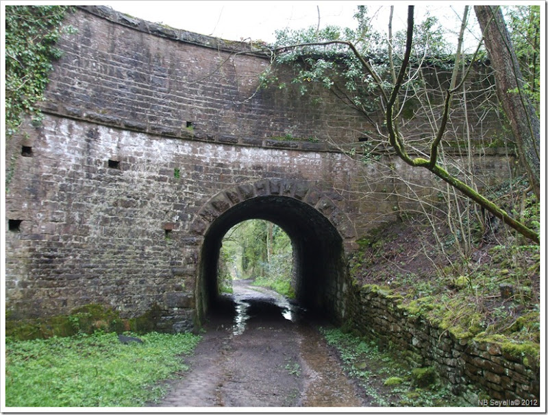 DSCF0473 Strines Aqueduct