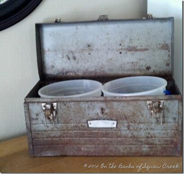 ice cream buckets in tool box for planting
