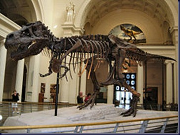 250px-Sue,_Field_Museum_of_Natural_History