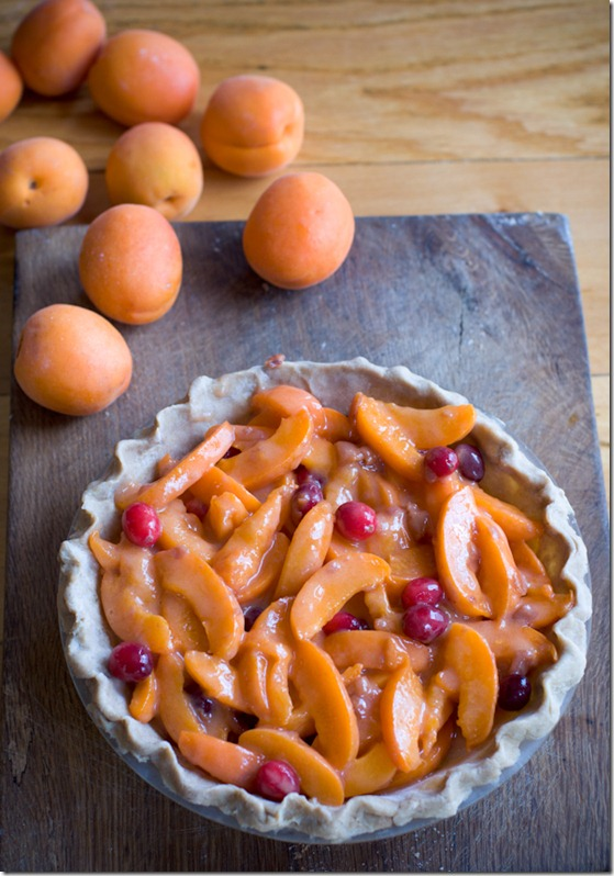 Apricot pie-3597