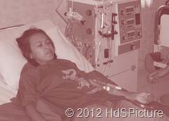 Gambar 1.7 Penderita gagal ginjal dapat ditolong dengan cuci darah, menggunakan dialisator