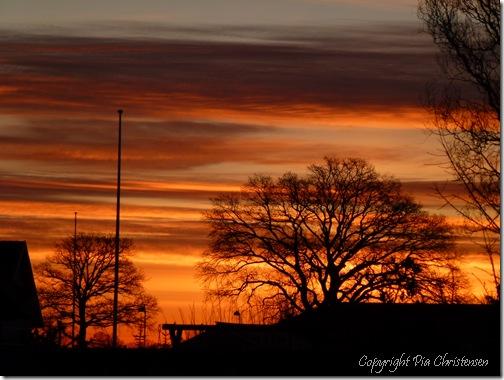 Solopgang 16. febr. 2012
