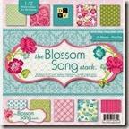 dcwv blossom song