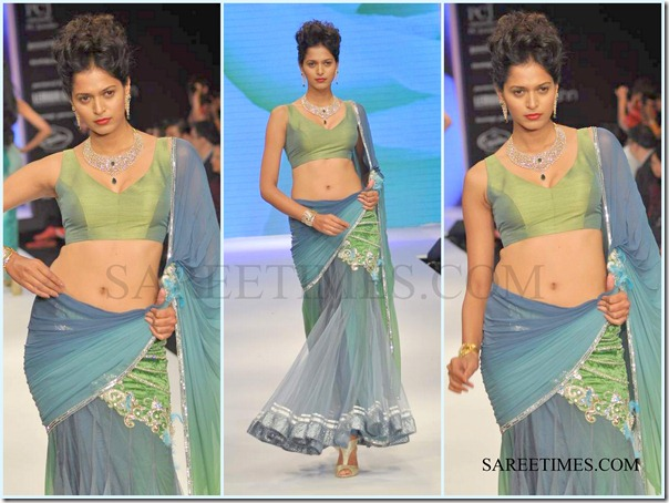Jashn_IIJW_Saree (8)