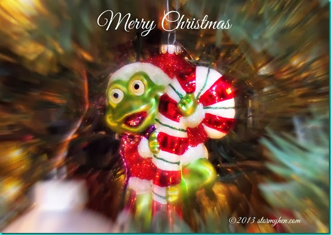 Merry Christmas frog
