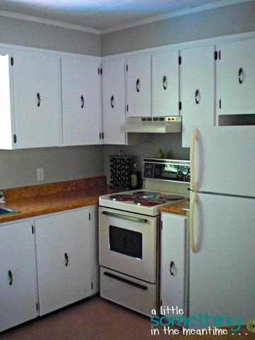 Kitchen Right of Window WM