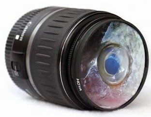 lensa fish eye