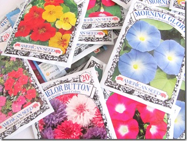 flower seeds (2)