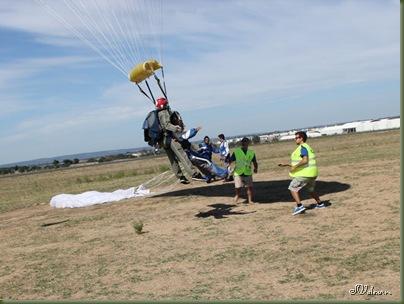 skydive 161