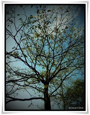 C360_2012-10-06-08-05-35