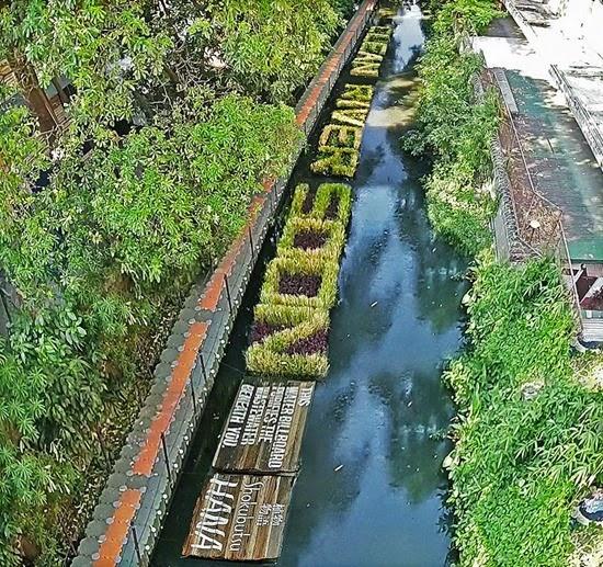 Plantas Rio Pasig 01