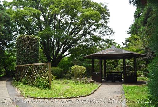 Glória Ishizaka -   Kyoto Botanical Garden 2012 - 79