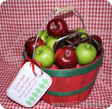 apple basket snack gift obseussed D