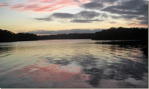 Tampa Fishing 2012 084