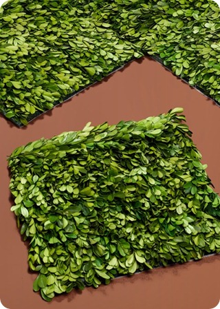 boxwood mat crafting