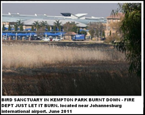 BIRD SANCTUARY BURNS DOWN KEMPTON PARK NEXT TO AIRPORT