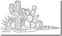 mexico_cactus copia