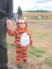 10.29.11 Cousins halloween Graham Tony the Tiger